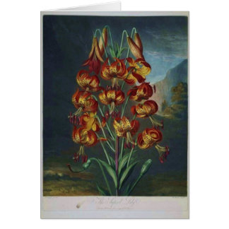 Tiger Lilies Card
