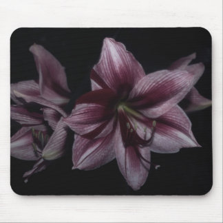 Tiger Lilies Enchanced Mouse Pad