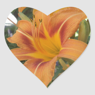tiger lilies heart sticker