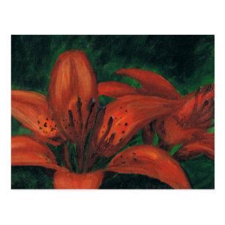 Tiger Lilies Postcard