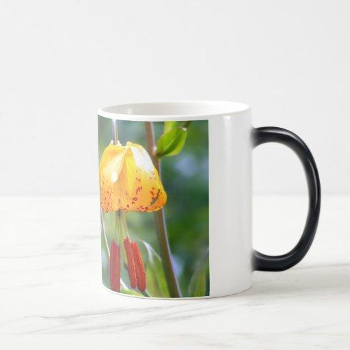 Tiger Lillies Mugs