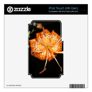 Tiger Lilly on Black Background Decals For iPod Touch 4G
