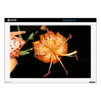 Tiger Lilly on Black Background Decals For Laptops