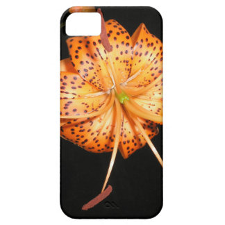 Tiger Lilly on Black Background iPhone SE/5/5s Case