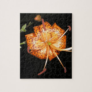 Tiger Lilly on Black Background Jigsaw Puzzle