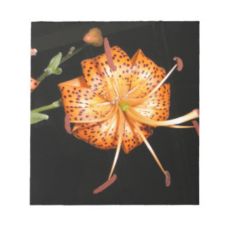 Tiger Lilly on Black Background Notepad