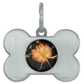Tiger Lilly on Black Background Pet ID Tag
