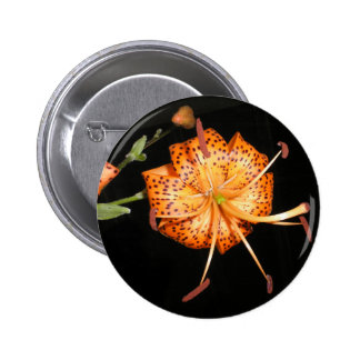 Tiger Lilly on Black Background Pinback Button