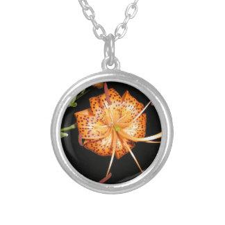 Tiger Lilly on Black Background Round Pendant Necklace