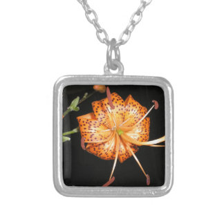 Tiger Lilly on Black Background Silver Plated Necklace