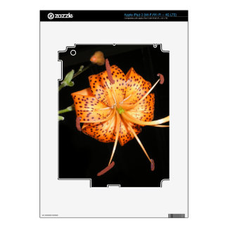 Tiger Lilly on Black Background Skins For iPad 3