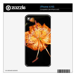 Tiger Lilly on Black Background Skins For The iPhone 4