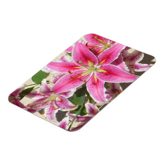 Tiger Lily Explosion of Color Magnet