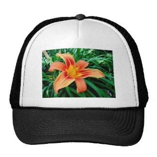 Tiger lily trucker hat