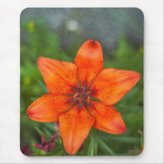 Tiger Lily II Mouse Pads