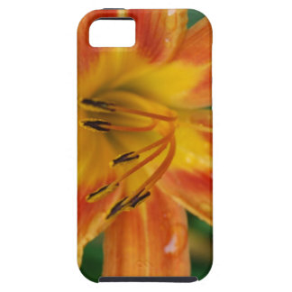 Tiger lily iPhone SE/5/5s case