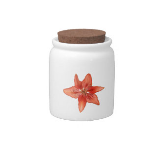Tiger Lily Painting Candy Jar