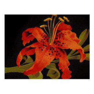 Tiger Lily Postcard