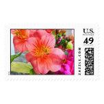 Tiger Lily Stamp