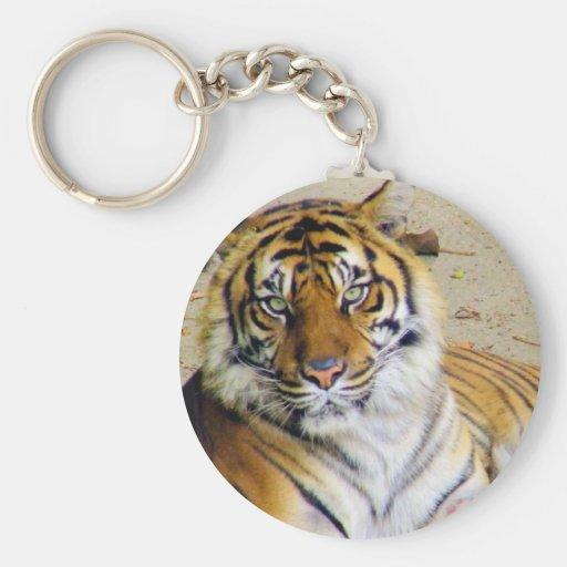Tiger_ Llavero