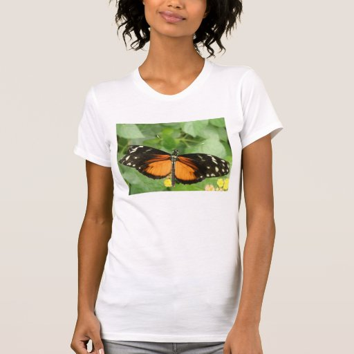 Tiger Longwing Butterfly T Shirt