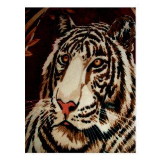 tiger look forward to love postcard
