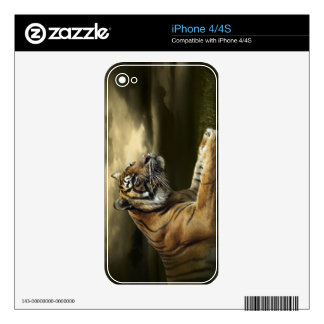 Tiger looking and sitting under dramatic sky decal for the iPhone 4S