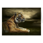 Tiger looking and sitting under dramatic sky greeting card