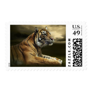 Tiger looking and sitting under dramatic sky postage