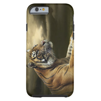 Tiger looking and sitting under dramatic sky tough iPhone 6 case