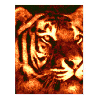 Tiger Lost Patterns Postcard