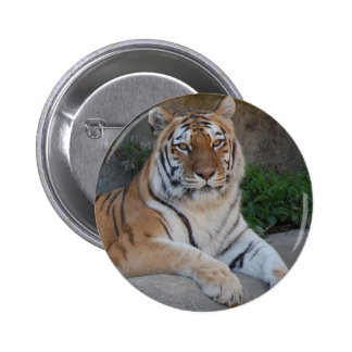 Tiger Love Button