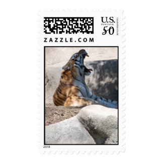 Tiger Love Postage