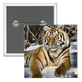 Tiger Lovers Art Gifts Pin