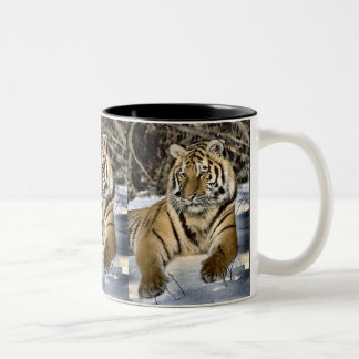 Tiger Lovers Art Gifts Two-Tone Coffee Mug