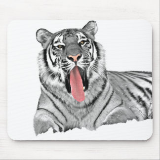 Tiger lying in snow and showing tongue mouse pad