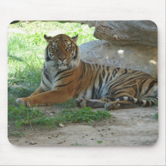 Tiger lying whole surface mouse pad