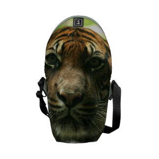 Tiger Courier Bag