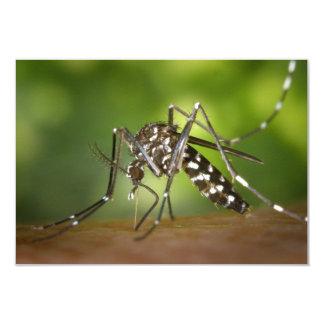 """Tiger mosquito 3.5"""" x 5"""" invitation card"""