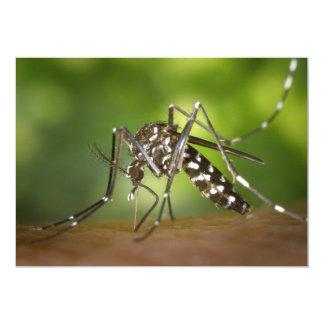 """Tiger mosquito 5"""" x 7"""" invitation card"""