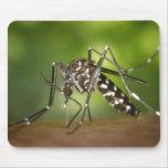 Tiger mosquito mousepad