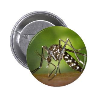 Tiger mosquito pinback button