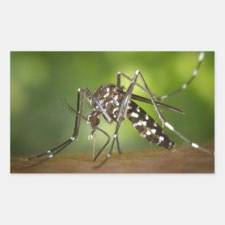 Tiger mosquito rectangular sticker