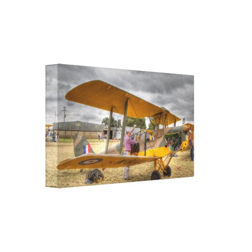 Tiger Moth  Prepared for her flight Gallery Wrap Canvas