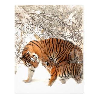 Tiger Mother and baby Letterhead