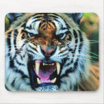 Tiger mousemat