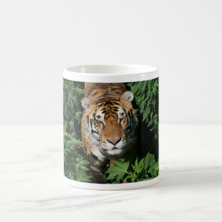 Tiger - mug