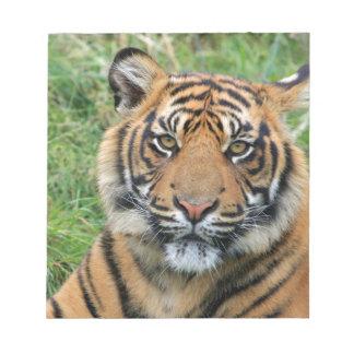Tiger Notepads