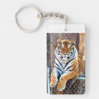 Tiger on a Fence Keychain