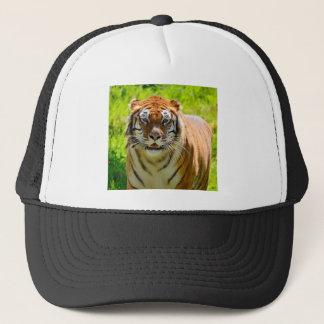 Tiger on grass trucker hat